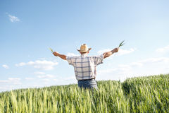 Senior farmer in a field Stock Image