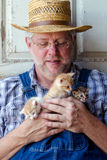 Senior farmer with handful of kittens Royalty Free Stock Image