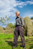 Senior farmer on a meadow with hay stacks Royalty Free Stock Images