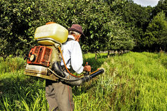 Senior farmer spraying the orchard Royalty Free Stock Image