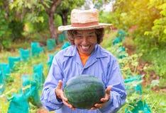 Senior farmer woman hold watermelon in farm Stock Image