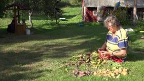 Senior farmer woman process fresh beetroot vegetables in rural house yard. 4K stock footage