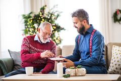 A senior father and adult son sitting on a sofa at Christmas time, eating biscuits. A senior father and adult son sitting on a sofa at home at Christmas time royalty free stock images