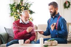 A senior father and adult son sitting on a sofa at Christmas time, eating biscuits. A senior father and adult son sitting on a sofa at home at Christmas time stock photography