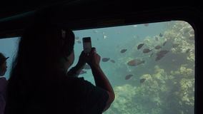 Senior female adult tourist on board a submarine for viewing coral reefs of the seabed photographs fish on a smartphone. `s chamber. Slow Motion stock video