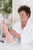 Senior female doctor demonstrate and explain the human body. Royalty Free Stock Photo