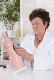 Senior female doctor demonstrate and explain the human body. Senior female doctor demonstrate and explain the human body with torso Royalty Free Stock Photo