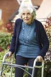 Senior Female In Garden Using Walking Frame Stock Images