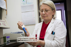 Senior female scientist working in the laboratory Royalty Free Stock Photography