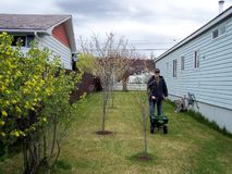 Senior fertilizing the lawn in the early spring time Royalty Free Stock Photos