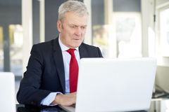 Senior financial analyst. Shot of an elderly financial director working on laptop in the office royalty free stock images