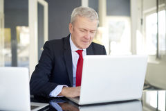 Senior financial analyst. Shot of an elderly financial director working on laptop in the office royalty free stock photos