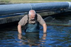 Senior fisherman fishing in river royalty free stock photography