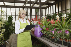 Senior florist using tablet pc in greenhouse Royalty Free Stock Photography