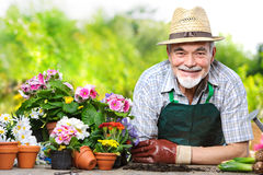 Senior in the flower garden Royalty Free Stock Photography