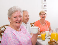 Senior friends Stock Images