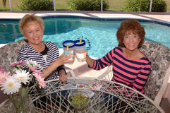 Senior friends cheers royalty free stock photo