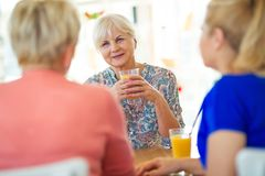 Senior friends having good time together Royalty Free Stock Images