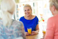 Senior friends having good time together Royalty Free Stock Image