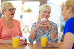 Senior friends having good time together. While gathered together at cafe Stock Photos