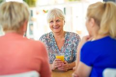 Senior friends having good time together Stock Photography