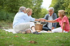 Senior friends having pic-nic enjoying Royalty Free Stock Photography