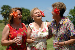 Senior friends laughing. Senior friends outdoors holding drinks laughing during a picnic, party or vacation Royalty Free Stock Image