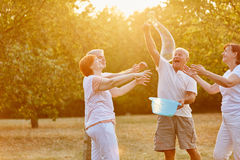 Senior friends making soap bubbles Royalty Free Stock Image