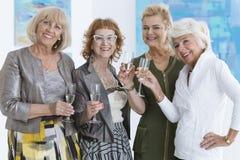 Senior friends posing for a photo royalty free stock photos