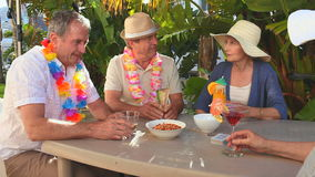 Senior friends taking an aperitif stock video