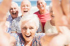 Senior friends taking selfie Stock Photo