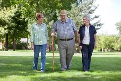 Senior Friends Walking in Park Stock Image