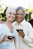 Senior Friends With Wine Glasses Outdoors Royalty Free Stock Photo