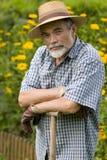 Senior in the garden Stock Image