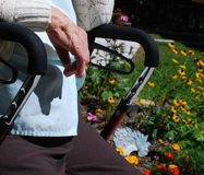 Senior in a garden. Senior lady sitting in a wheelchair amongst flowers Royalty Free Stock Photography