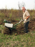 Senior gardener Royalty Free Stock Photos