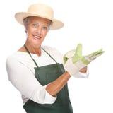 Senior gardener. Full isolated portrait of a senior gardener stock photography