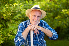 Senior gardener, contented Stock Photos