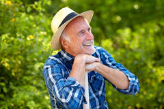 Senior gardener happy Stock Image