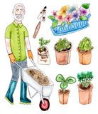 Senior gardener and seedling - watercolor set. Watercolor set of senior gardener and seedling on white background vector illustration