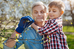 Senior gardener spending free time with grandson in yard. Caring about environment. Adorable grandpa wearing a navy blue garden glove holding his grandson in Royalty Free Stock Images