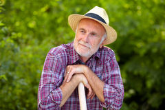 Senior gardener with straw hat Stock Image