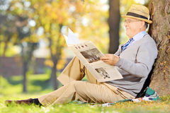 Senior gentleman seated on a grass reading newspaper in a park. At autumn Royalty Free Stock Images