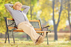 Senior gentleman sitting on bench and relaxing Stock Image