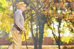 Senior gentleman walking with a cane in park. Senior gentleman walking with a cane in a park Stock Images