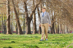 Senior gentleman walking in park Stock Photography
