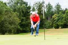 Senior golf player aiming his stroke to the hole Stock Image
