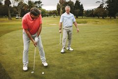 Senior golfer making a shot on putting green. Senior golfer on putting green about to take the shot. Male golf player putting on green with second player royalty free stock photos