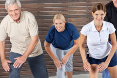 Senior group doing back exercises Royalty Free Stock Photography