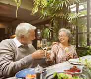 Senior Group Relax Lifestyle Dinning Concept Stock Photography